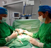 Chilean Surgery Team Returns to Bethlehem