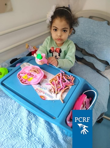 How Can You Help Palestinians in Lebanon's Refugee Camps?