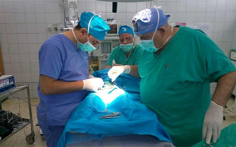 Egyptian Pediatric Surgery Team Enters Lebanon